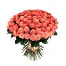 101 роза дешево. Купить 101 розу