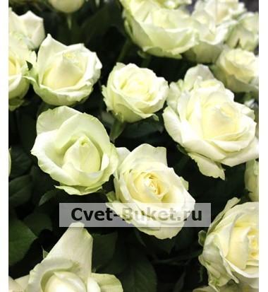 """Корзина - """"201 белая роза"""""""