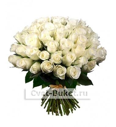 """Цветы - Роза """"Аваланж"""" (Голландия)"""