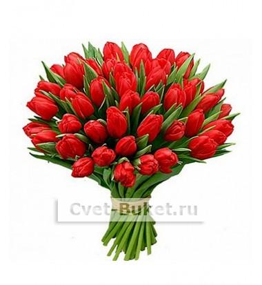 Цветы - Красные тюльпаны