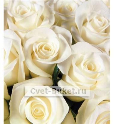 Букет - Розы Аваланш