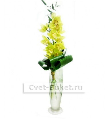 Композиции из цветов - Орхидея