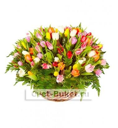 Букет тюльпанов 17