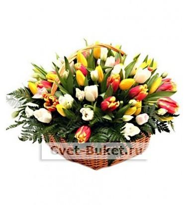 Букет тюльпанов 30