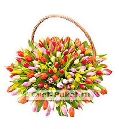 Букет тюльпанов 38