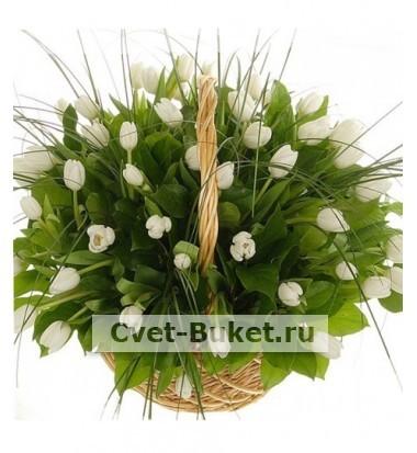 Букет тюльпанов 49