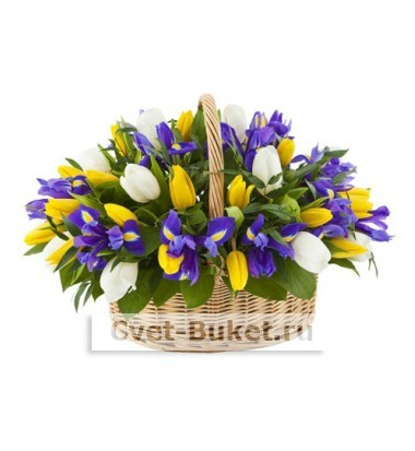 Корзина Тюльпаны с ирисами