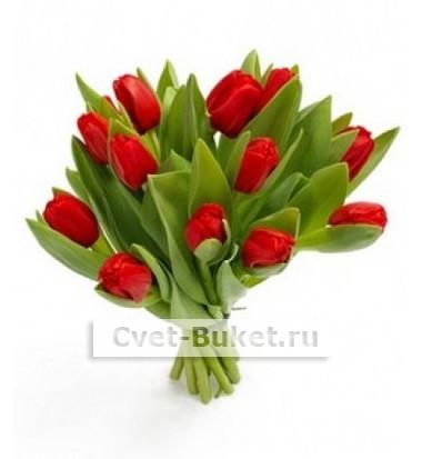15 Тюльпанов красные